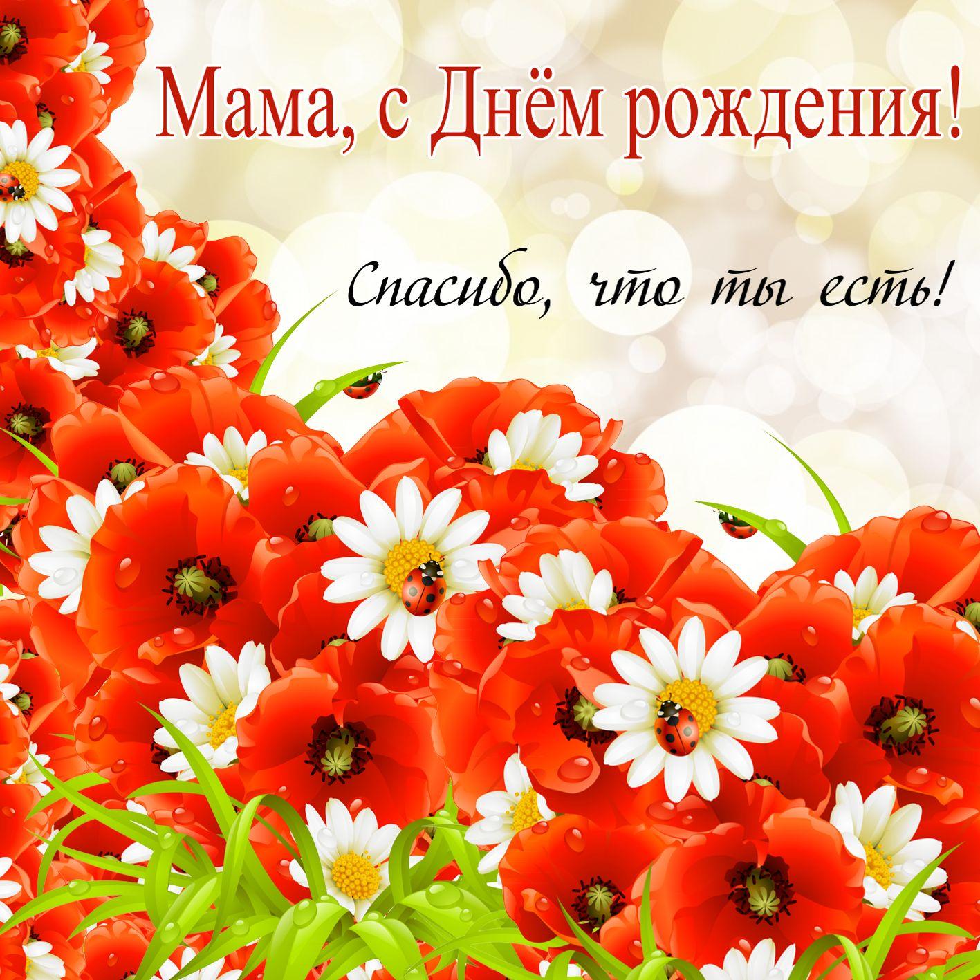 Поздравления сднем рождения маму