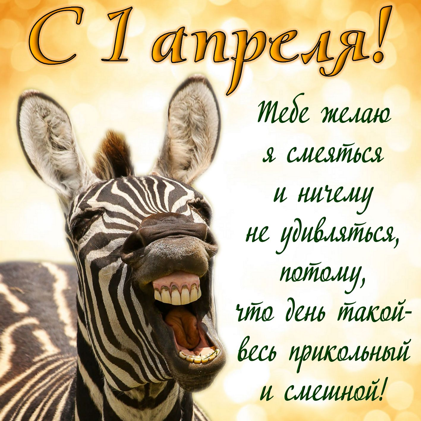 Смешная зебра с пожеланием на 1 апреля