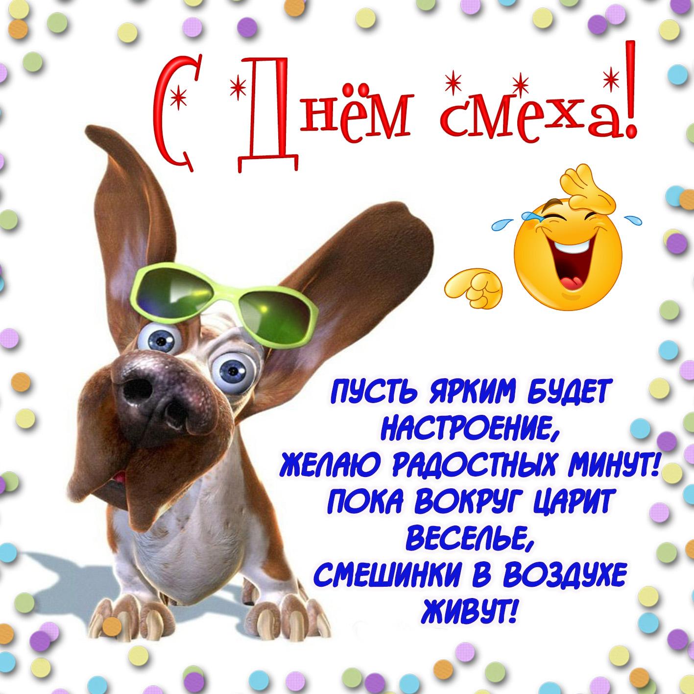Картинка с забавной собачкой на День смеха