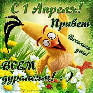 Открытка с забавным цыпленком поздравляющим с 1 апреля