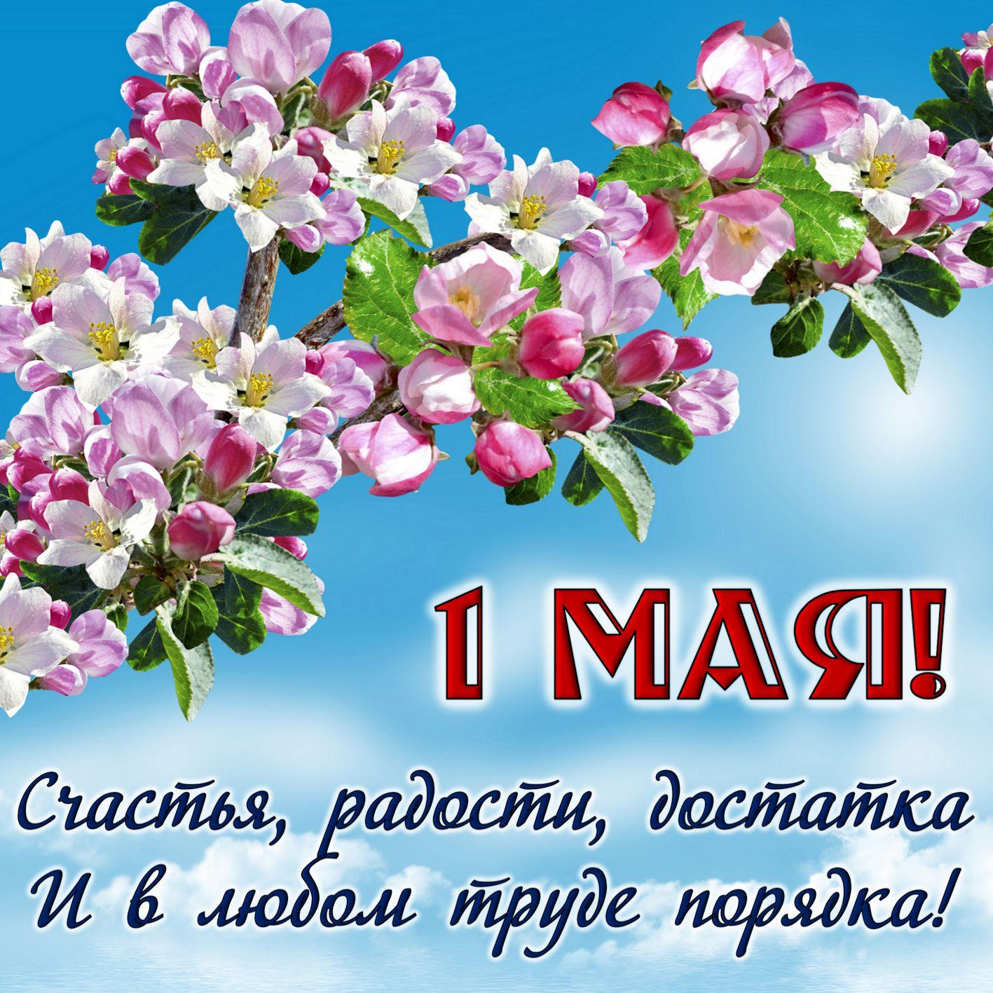 Открытка с пожеланием и цветами к 1 Мая