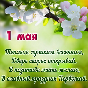 Красивое пожелание на фоне весенних цветов