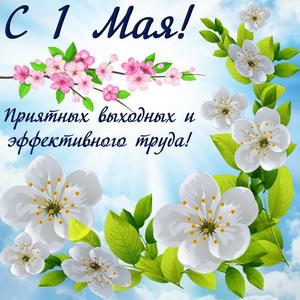 Весенние цветы с пожеланием на День весны