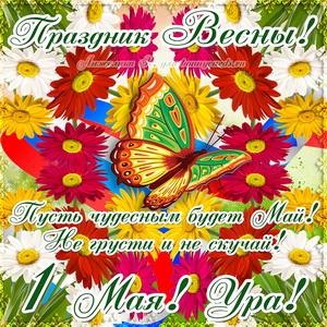 Открытка на праздник Весны с бабочкой и цветочками