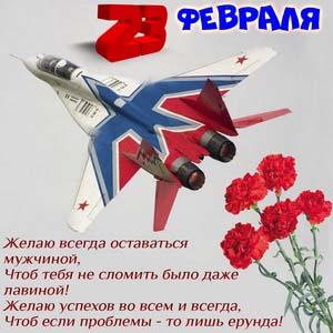 Открытка с самолётом и цветами на 23 февраля