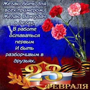 Гвоздики к 23 февраля на фоне флага России