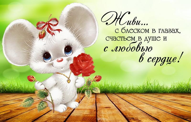 С днём рождения, мышка с цветами