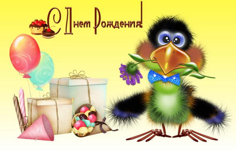 Видео открытка с днем рождения поздравляю тебя мультик с птичками, выздоравливайте взрослая