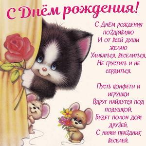 Картинка с котом и мышатами на День рождения