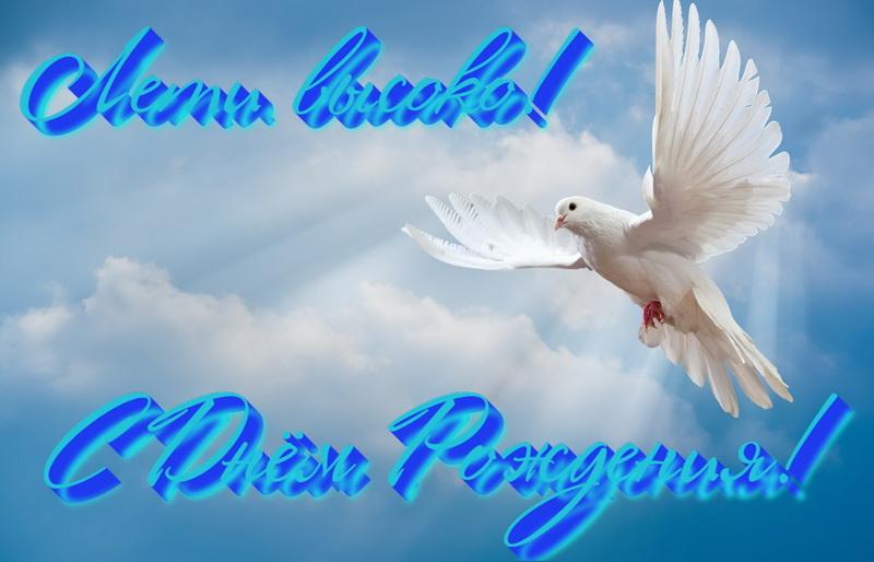 Пожелание мужчине, лети высоко, голубь
