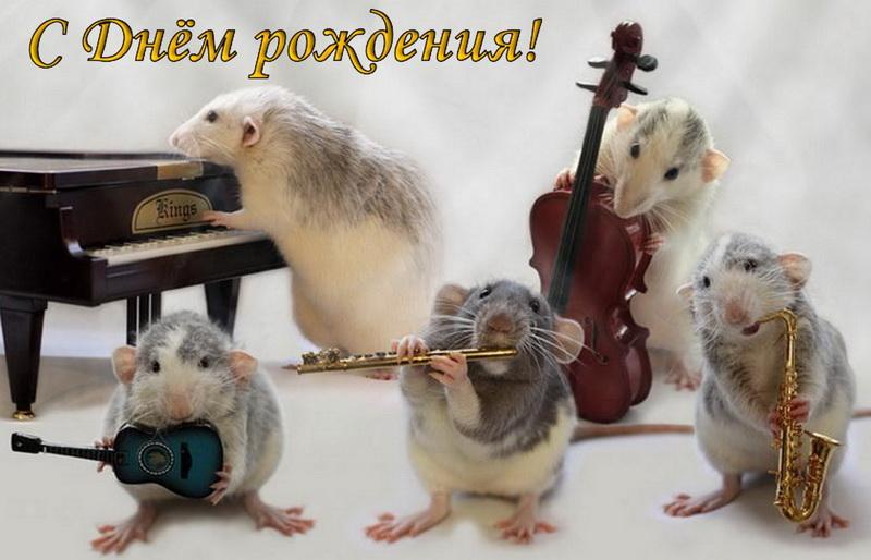 Открытка мышата играют на музыкальных инструментах