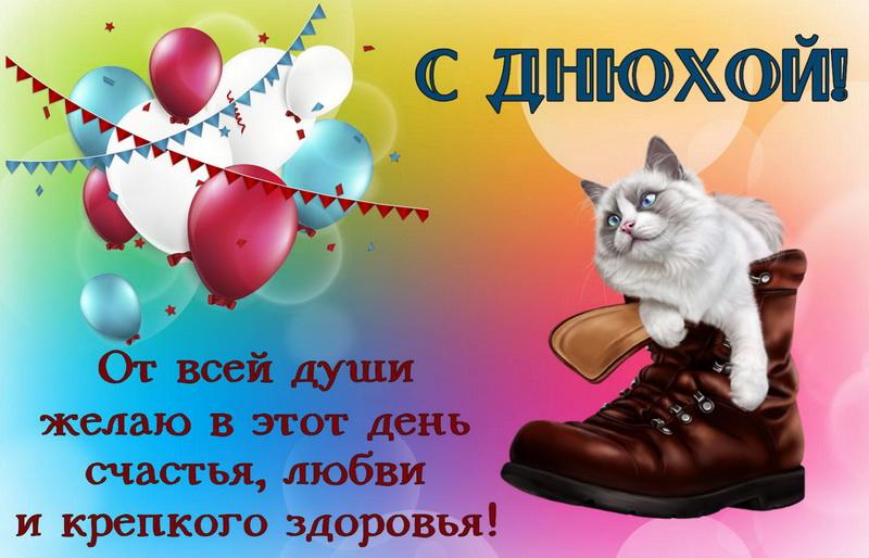 открытка - кот в ботинке поздравляет с Днюхой