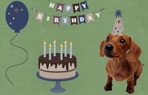 Happy Birthday, торт, собачка и шарик