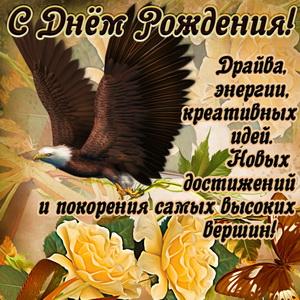 Картинка с летящим орлом и пожеланием мужчине