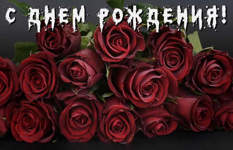 Для женщины, красивые бордовые розы