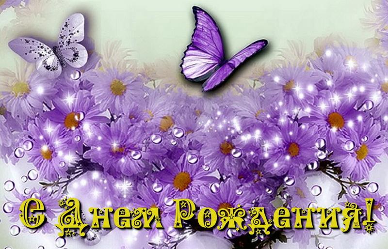 Открытка, бабочки, фиолетовые цветы