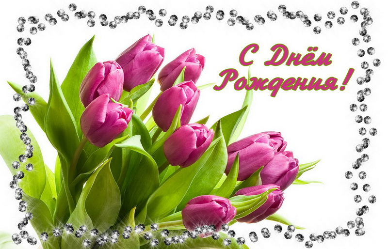 Женщине, с Днём Рождения, букет фиолетовых тюльпанов