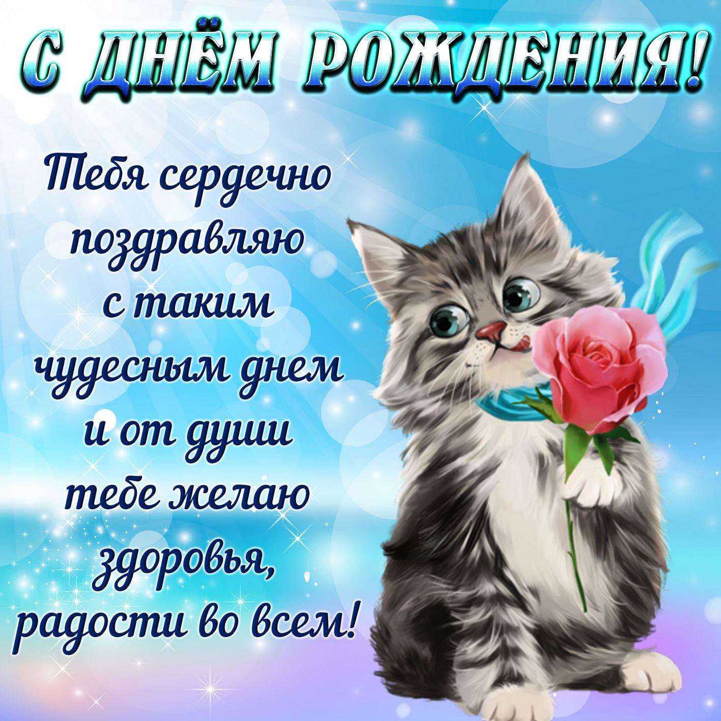 Открытка на День рождения - котёнок с розой для девушки