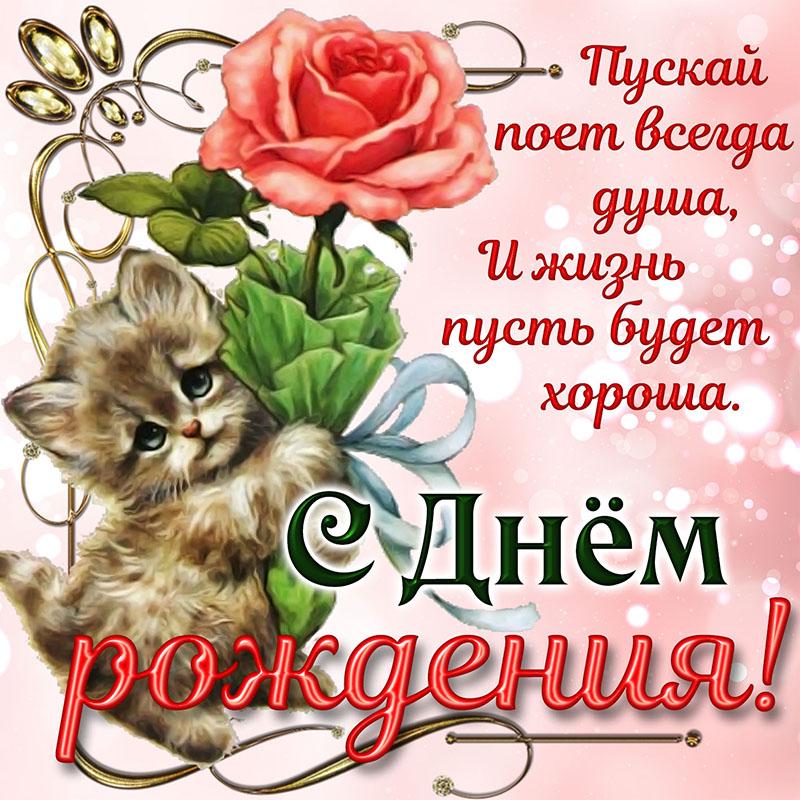 Открытка - котёнок дарит розочку девушке на День рождения