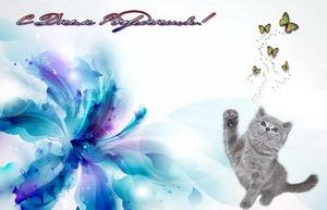 Поздравление, цветок, котик