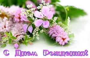 С днем рождения, розовые цветы