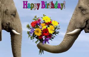 Happy Birthday, слоны с красивым букетом.