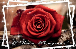 Открытка в рамке с большой красной розой.