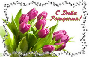 Женщине, с Днём Рождения, букет фиолетовых тюльпанов.