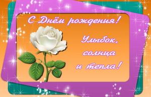 Белая роза на красивом блестящем фоне
