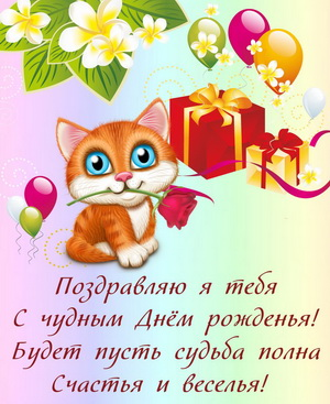 Маленький котенок поздравляет с Днем рождения