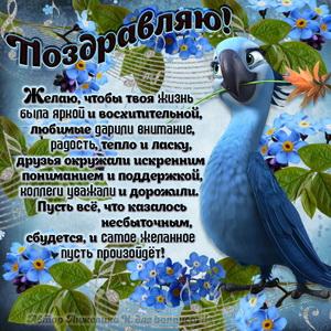 Милый попугайчик поздравляет с Днём рождения