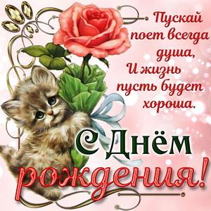 Котёнок дарит розочку девушке на День рождения