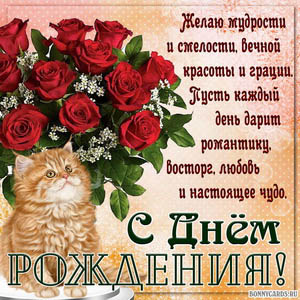 Картинка женщине на День рождения с букетом роз и котиком
