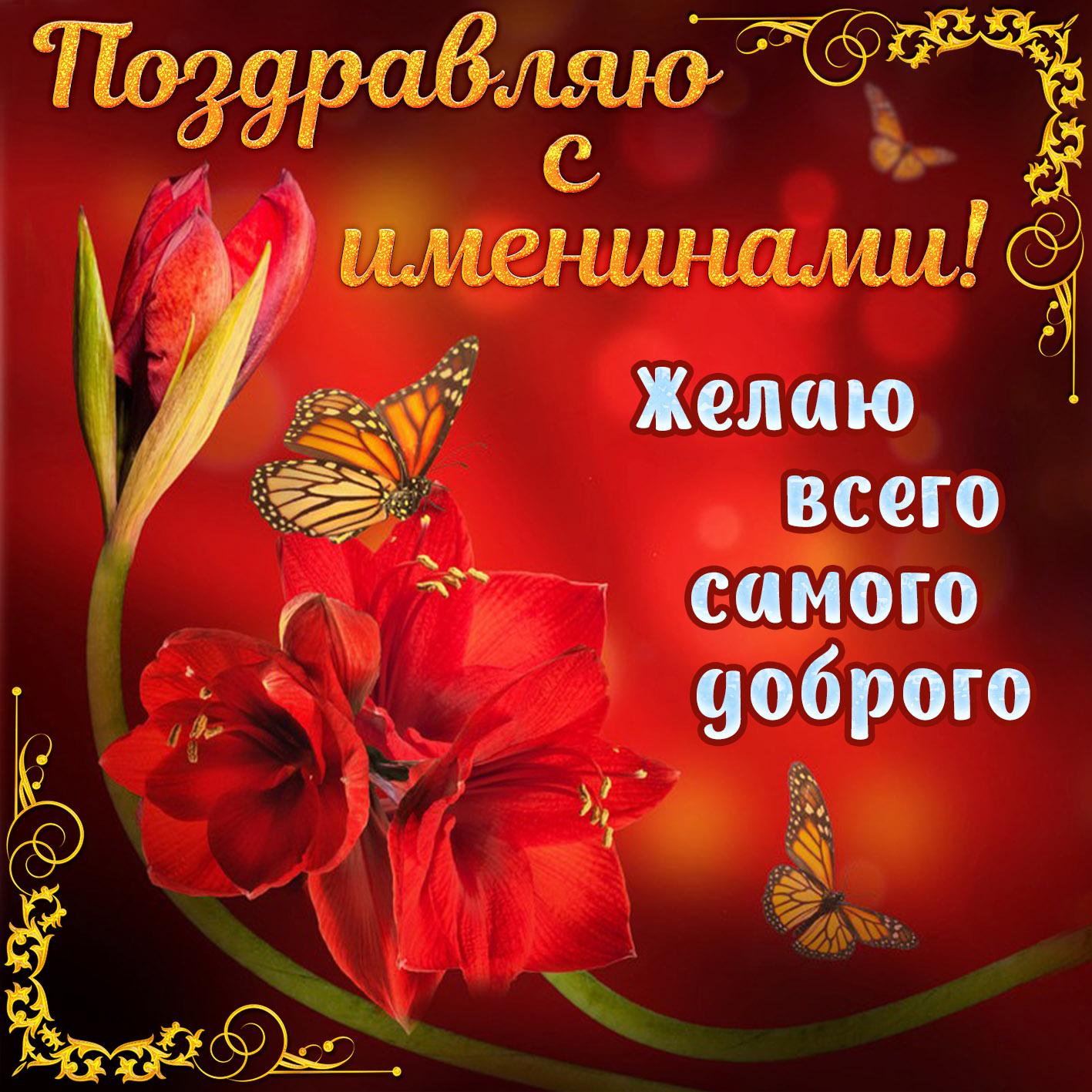 Картинка с красным цветком на именины