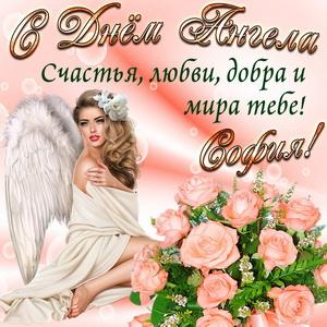 Картинка Софии на День Ангела с розами