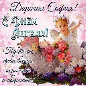 Добрая открытка на День Ангела Софии