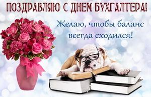 Собачка в очках лежит на книжках