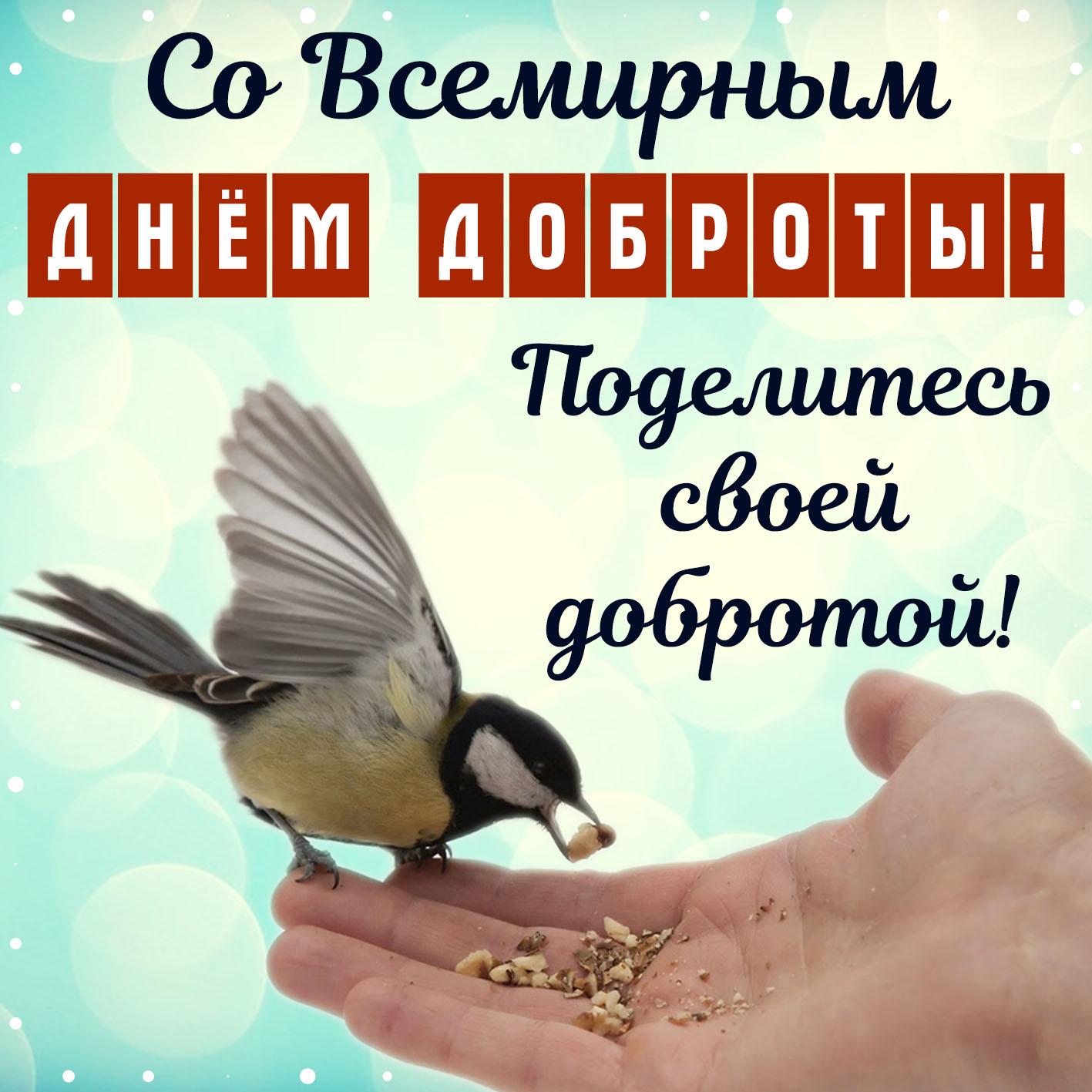 Открытка - синица на руке и поздравление со Всемирным днём доброты