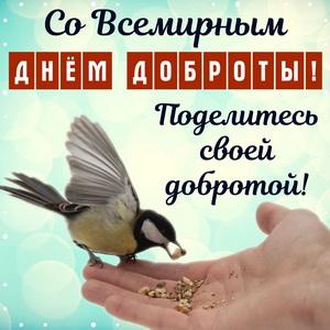 Синица на руке и поздравление со Всемирным днём доброты