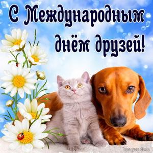 Милая открытка с собачкой и котиком на День друзей