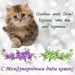 Умильный котенок на красивом фоне