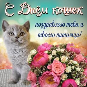 Картинка с красивым букетом на День кошек