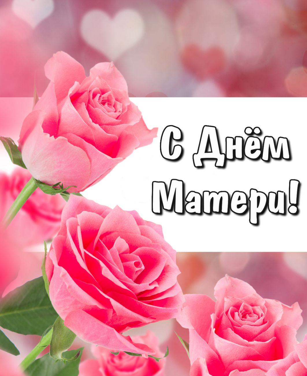 Открытка с красивыми розовыми розами