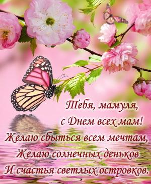 Бабочки на цветках и пожелание для мамы