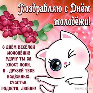 Весёлая открытка с котом и стихами на День молодежи