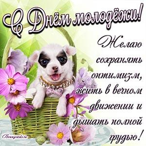 Картинка с собакой и поздравлением на День молодёжи