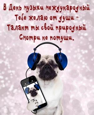 Собачка в наушниках и пожелание к Дню музыки