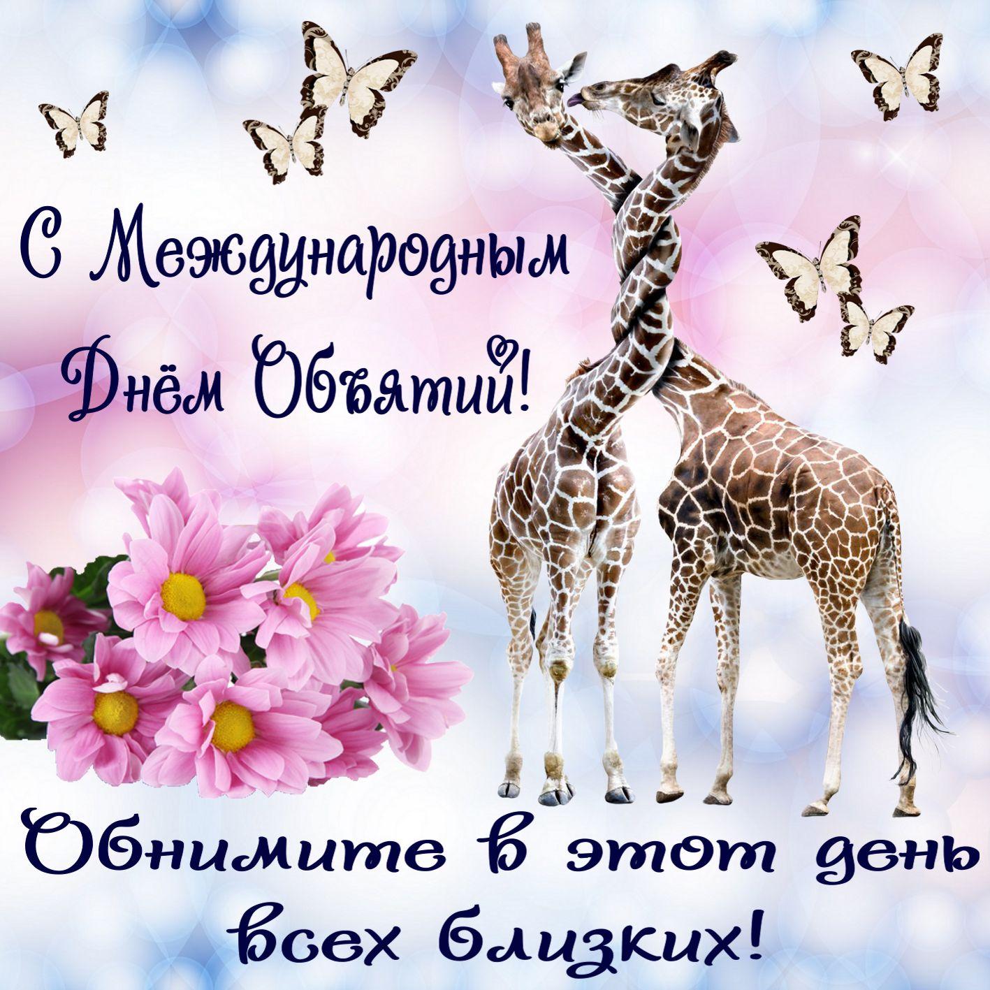 Открытка на День объятий - обнявшиеся жирафы на красивом фоне