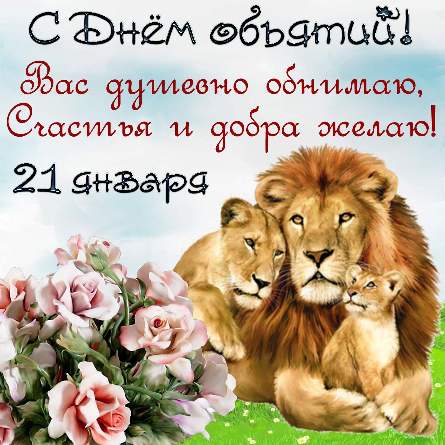 Открытка со львами и цветами на День объятий