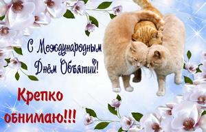 Обнимающиеся котики на красивом фоне